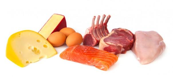 55 Problemas renales dietas altas en proteina