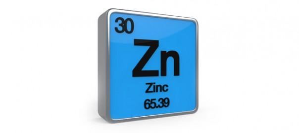 81 zinc en perros 25_08