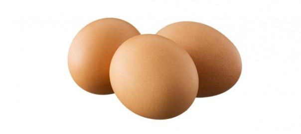 113 huevo crudo aporte de calcio 29_12