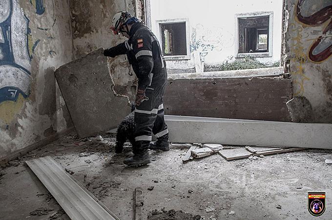 Unidades K-9 de rescate y salvamento: así trabajan.